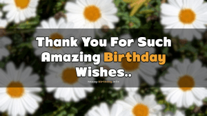 Thank You Birthday on Facebook 4